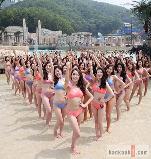 """韩国/""""2013韩国小姐决赛""""最终候选人比基尼泳装照格外靓丽。(韩国..."""