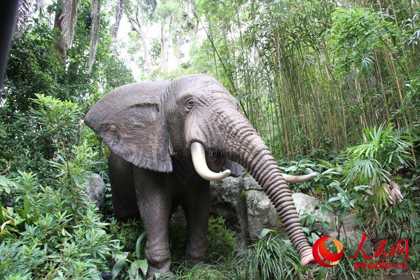 该游乐设施的主要看点是逼真的丛林动物造型,颇具临场感的动物鸣叫声