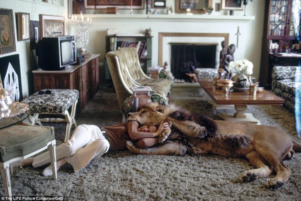美国女明星养狮子当宠物 同床共沐浴高清组图