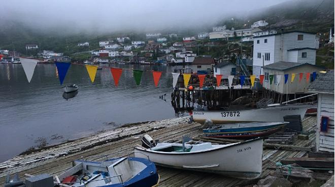 走进加拿大被浓雾笼罩的小城