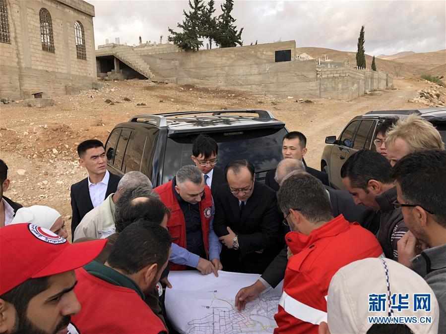 中国驻叙利亚大使齐前进(中)听取国际红十字会工作人员有关援助当地水处理项目的介绍。