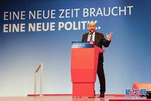 德社民党主席呼吁党内支持组阁谈判