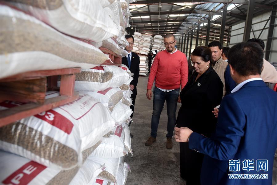 3月13日,在埃及布海拉省,布海拉省省长纳迪娅・阿卜杜(女)在新希望埃及三厂考察。