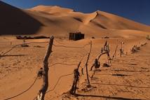 气候变化致撒哈拉沙漠100年扩张10%