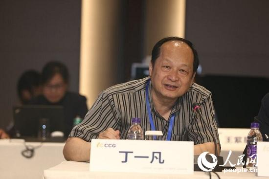 清华大学国家战略研究院资深研究员,CCG 特邀高级研究员丁一凡发言