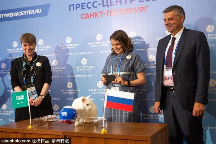明星待遇!俄罗斯神猫预测2018世界杯揭幕战胜