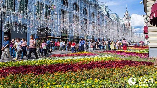 莫斯科花卉节 又到一年赏花时