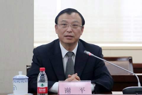 中国进出口银行副行长谢平介绍情况