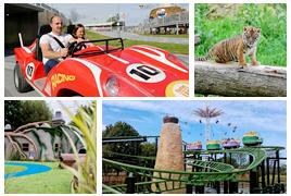 动物?赛车?盘点能满足孩子多种兴趣的度假村