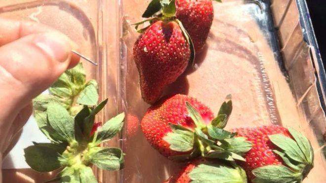 澳大利亚被插入缝衣针的草莓 图片来源:BBC网站