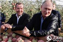 普京和梅德韦杰夫一同参观苹果园
