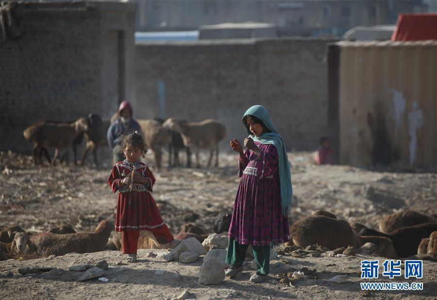 世界儿童日:阿富汗370万学龄儿童无书可读--国际--人民网
