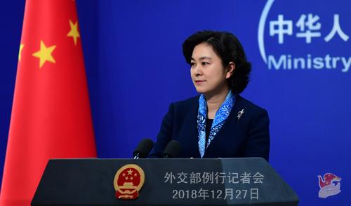 外交部:以元首交往为核心 推动中俄关系明年取得更大发展