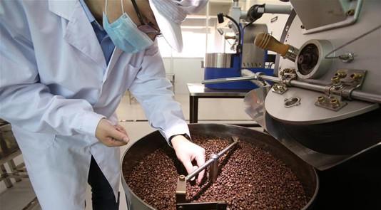 """咖啡豆的""""一带一路""""之旅"""
