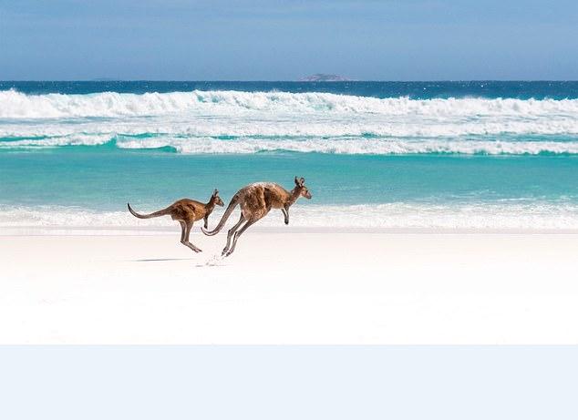 没有充足的旅行时间?如何两周玩遍澳大利亚标志性景点