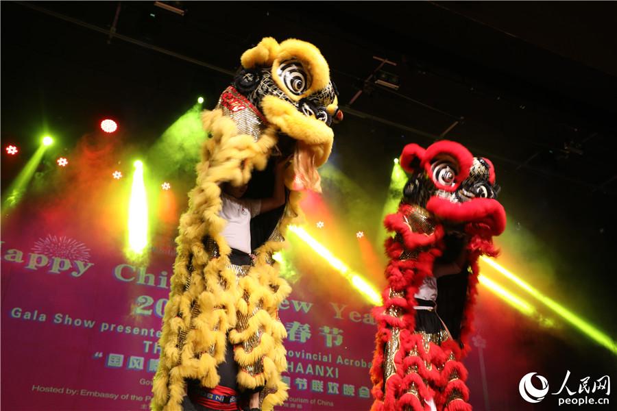 """""""国风秦韵""""毛里求斯春节联欢晚会开场舞狮表演。"""