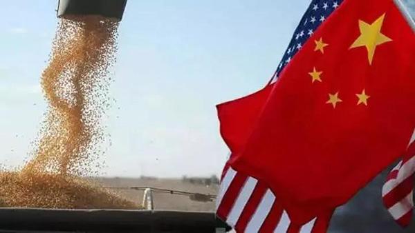 """用""""大豆逻辑""""来看看中美贸易战"""