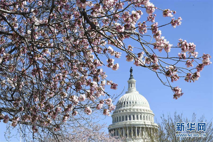 美国会众议院未能推翻总统否决令