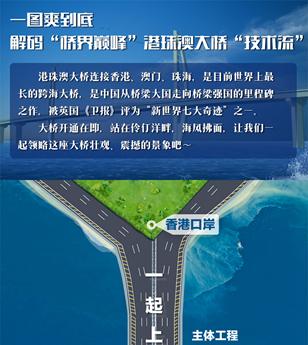 """一图解码""""桥界巅峰""""港珠澳大桥""""技术流"""""""