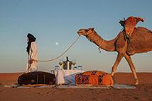 体验沙漠营地的宁静与美妙