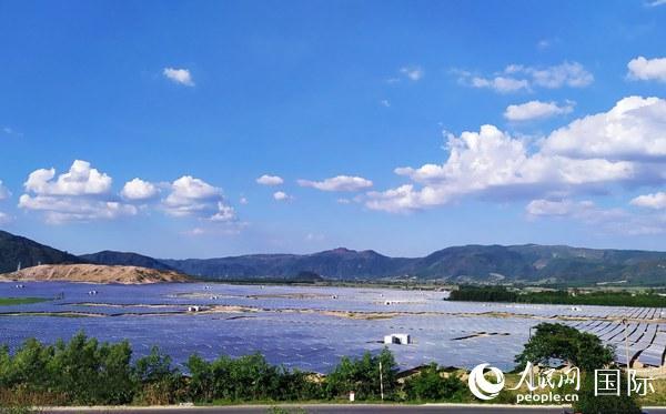 位于越南富安省的华会光伏电站一角