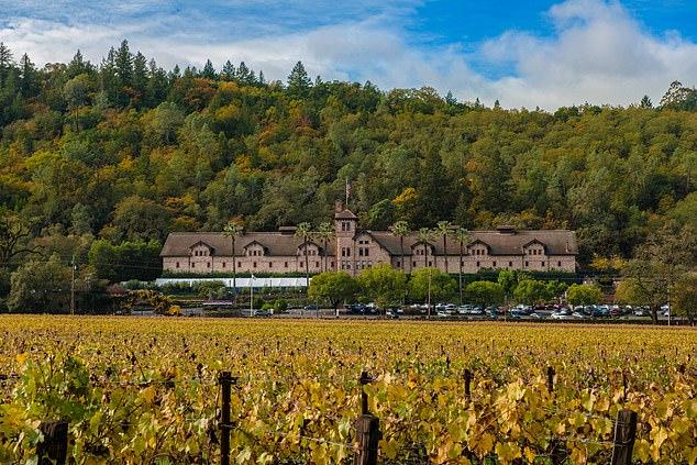 品尝葡萄酒体验地热温泉加利福尼亚州的精致魅力