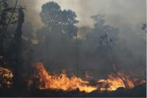 亚马逊雨林野火持续燃烧