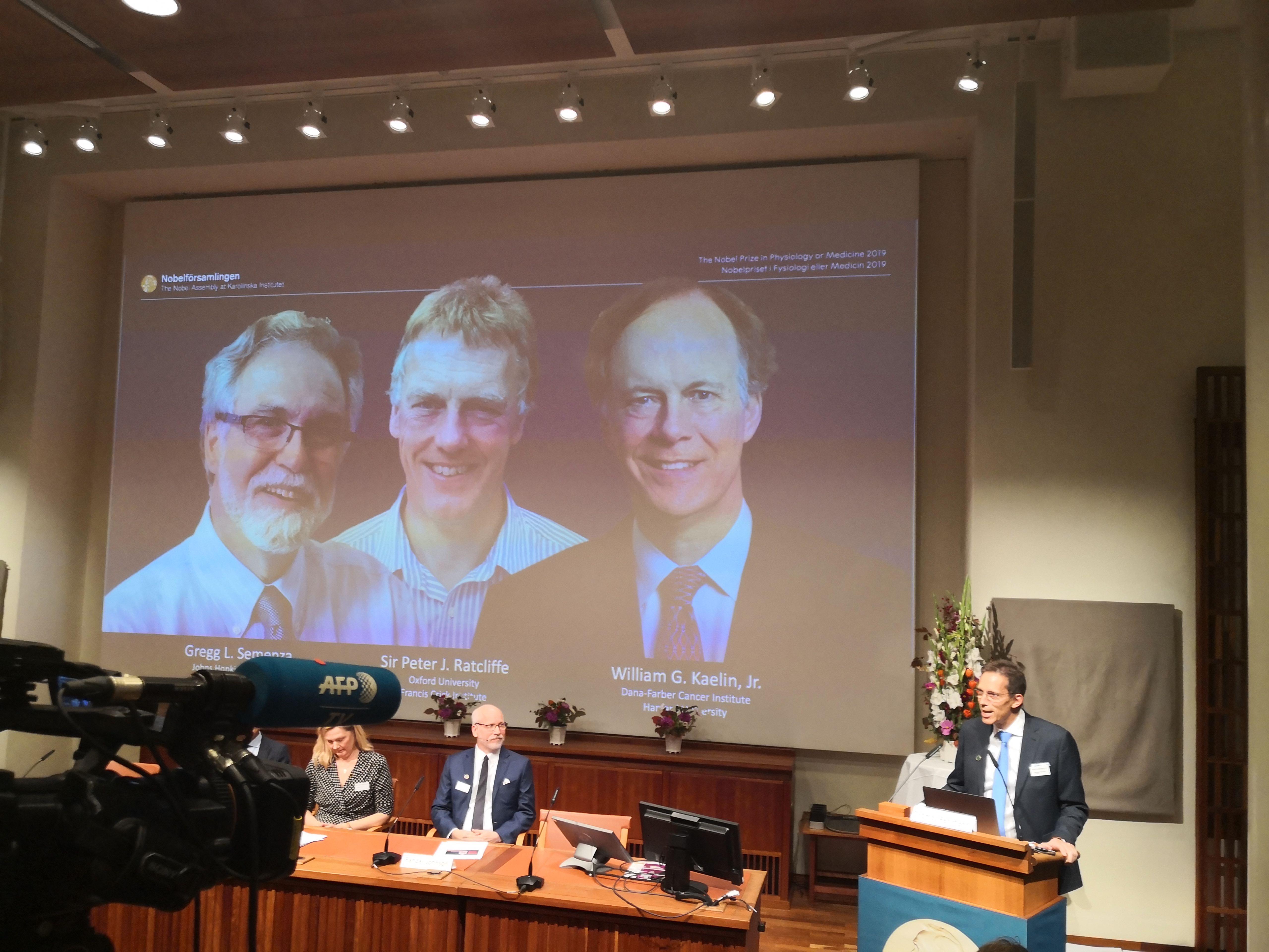 2019诺贝尔生理学或医学奖在瑞典揭晓