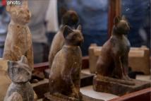 埃及发现数十具约2700年前动物木乃伊