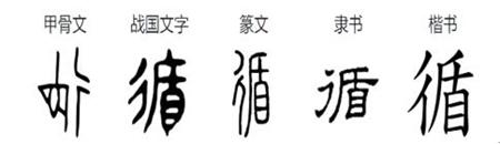 """2020指导性年度花艺汉字""""循""""发布"""