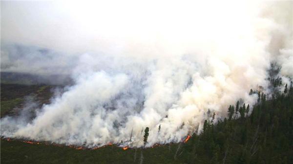 蒙古国东方省15日发生森林火灾 当地紧急情况人员已到现场灭火