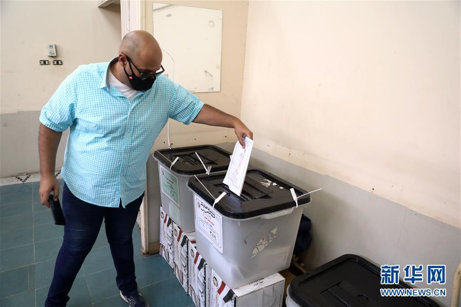 埃及举行议会上院选举