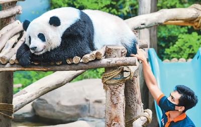 马来西亚国家动物园重新开放