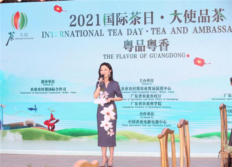 """让这杯好茶霸屏!多国大使为它而来丨2021""""国际茶日""""倒计时开启"""