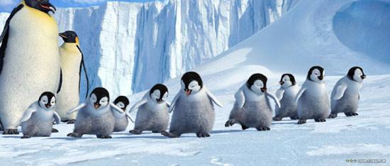 组图:小企鹅可爱出击 北美票房超过007 (14)