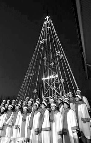 爱妓峰上的圣诞树将会一直点灯到明年1月8日。