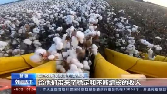 以色列短视频博主高佑思去新疆啦亲身体验机械化种棉